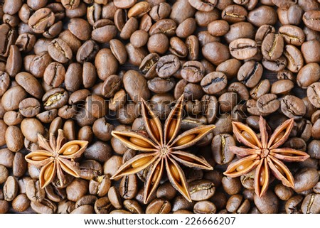 Roasted coffee beans with anise - stock photo