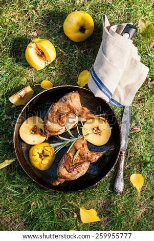 Roasted quails with quince fried in a pan outdoor, top view - stock photo