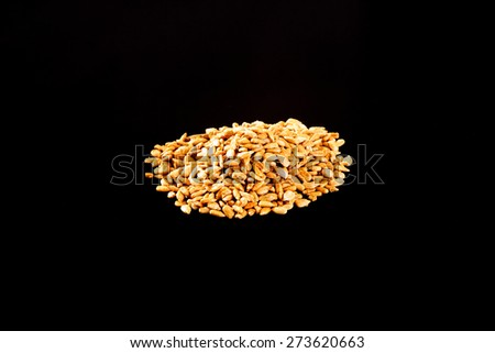 Roasted Salted Sunflower Seeds on a black background - stock photo