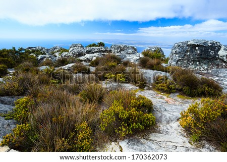 Rock and Landscape on Top of Table Mountain, Cape Town, South Africa - stock photo