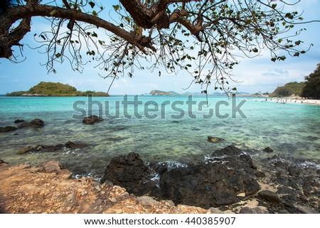 Rock and tree at tropical beach, Phuket, Thailand - stock photo