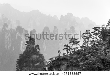 Rock columns mountain (Avatar rocks) in the mist. Zhangjiajie National Forest Park was officially recognized as a UNESCO World Heritage Site - China (black and white) - stock photo