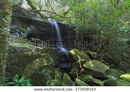 Rock falls in the forest - stock photo