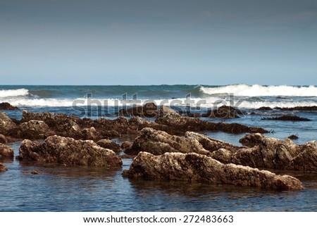 rock formations exposed at low tide, Makarori Beach, Gisborne, East Coast, New Zealand  - stock photo