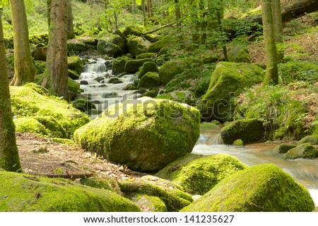 Rock full of moss at the edge of a small brook near famous Gertelbach waterfalls, Black Forest, Germany - stock photo