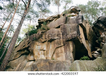 Rock in forest. Mountain Forest background. Misty green pine forest landscape. Travel - stock photo