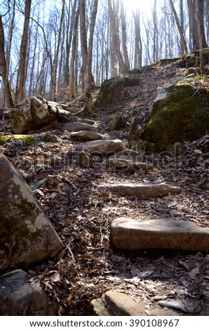 Rock steps on hardwood forest hiking path trail.  Sunshine streaming through trees of the natural untouched outdoor woods. - stock photo