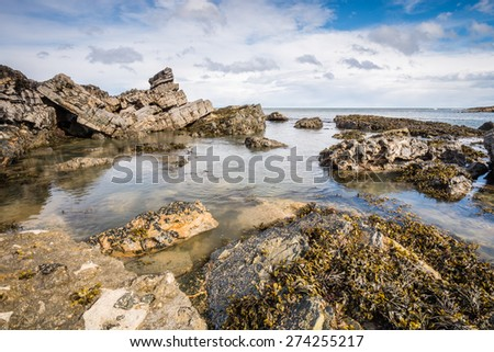 Rocks at Howick /  Seaweed covered rocks in the foreground leading out to sea at low tide on the Northumberland coastline near Howick - stock photo