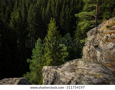 rocks over the coniferous forest - stock photo