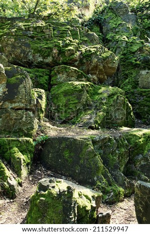 Rocks overgrown with moss in the forest. - stock photo
