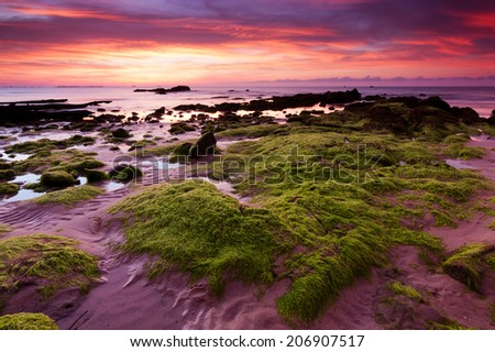 Rocks with green moss at sunset in Kudat, Sabah, East Malaysia, Borneo - stock photo