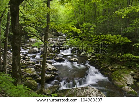 Rocky cascade and waterfall with softly filtered light through green forest in Great Smoky National Park. - stock photo