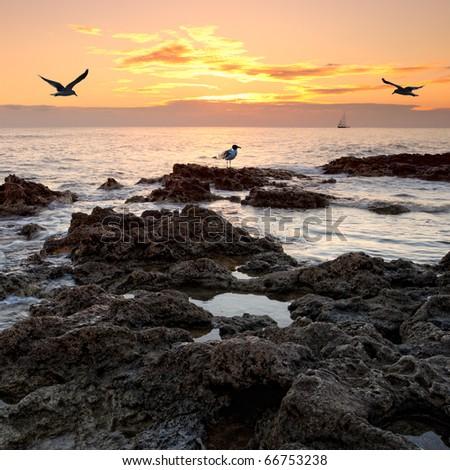 Rocky coastal view over sunset - stock photo