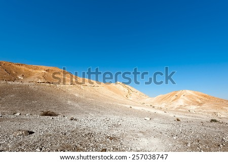 Rocky Hills of the Negev Desert in Israel, Toned Picture - stock photo