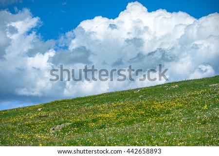 Rocky Mountain National Park grassy meadow and cloudy blue sky.  Colorado USA. - stock photo