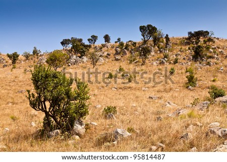 Rocky mountain side with grassland and trees - stock photo