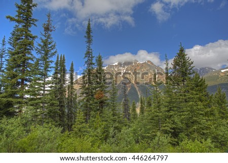 Rocky Mountains and boreal forest in summer- Jasper National Park, Alberta, Canada - stock photo