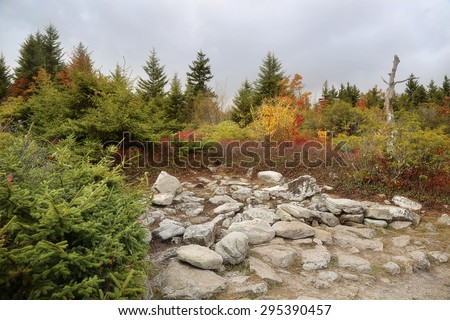 rocky plateau of the hills of Dolly Sods West Virginia mountains - stock photo