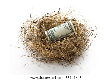 Roll of hundred US dollar bill laying in bird nest with soft shadow. Concept of retirement nest egg or savings. - stock photo