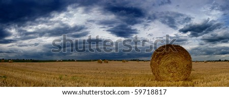 Rolled wheat in a farm field in england on a cloudy, moody day - stock photo