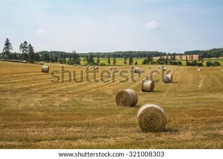 Rolling hay fields in Prince Edward Island, Canada. - stock photo