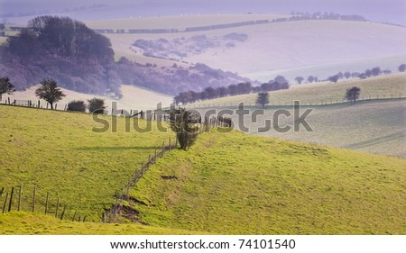 Rolling landscape over hills and valleys on hazy sunny evening - stock photo