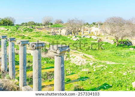 Roman ruins at Umm Qais in northern Jordan near the site of the ancient town of Gadara. The Hellenistic-Roman town of Gadara was also sometimes called Antiochia or Antiochia Semiramis. - stock photo