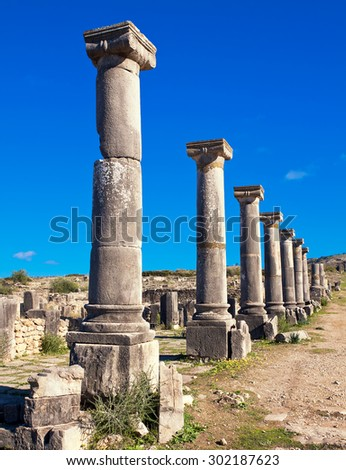 Roman ruins in Volubilis, Meknes Tafilalet, Morocco