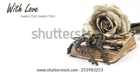 romance is the key to love, concept; keys, closed book and keys with copy-space; letterbox look - stock photo