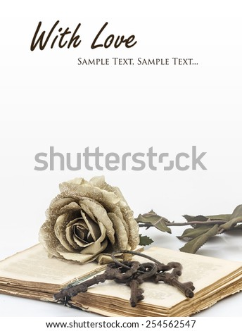 romance is the key to love, concept; rose, open book and keys with copy-space - stock photo