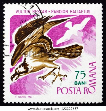 ROMANIA - CIRCA 1967: a stamp printed in the Romania shows Osprey, Pandion Haliaetus, Sea Hawk, Bird of Prey, circa 1967 - stock photo