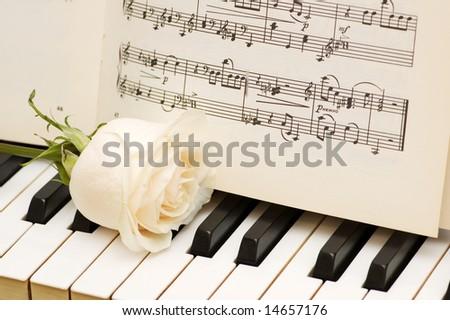 Romantic concept - white rose on piano keys - stock photo