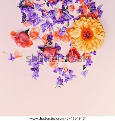 Romantic Flower Mix. Minimalist design - stock photo