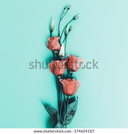 Romantic Flowers on blue background. Minimal style - stock photo