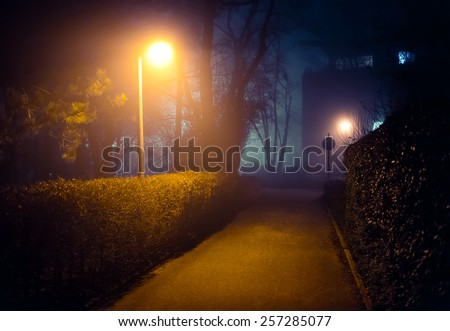 Romantic foggy night walk in a park with street lights (diffused, toned).   - stock photo