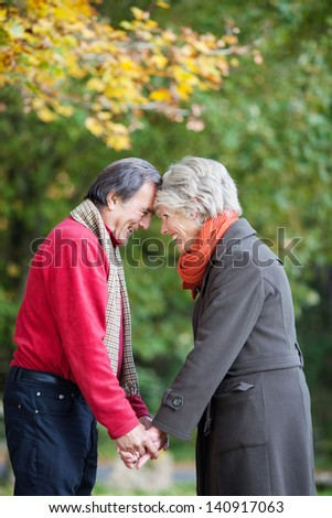 Romantic senior couple looking at each other holding hands - stock photo