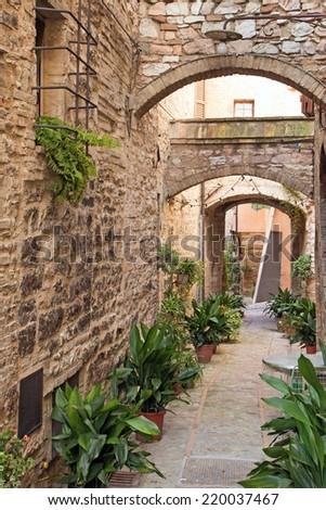 Romantic street decorated with plants in the historic Italian city. (Spello, Umbria, Italy.) - stock photo