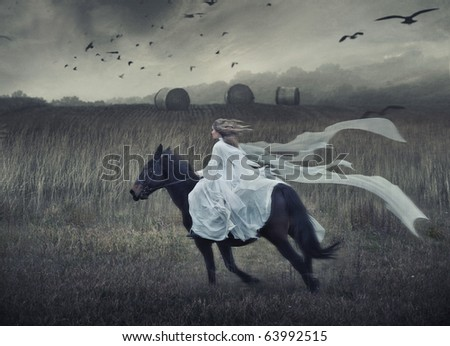 Romantic young beauty riding a horse - stock photo