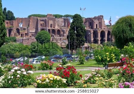 Rome Terme di Massenzio  - stock photo