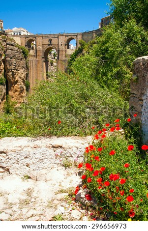 Ronda new bridge with field poppy in foreground (Andalusia, Spain) - stock photo