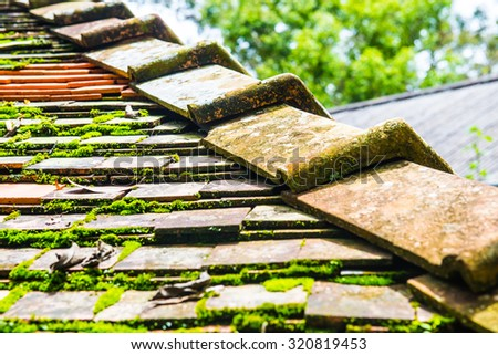 Roofing ceramic and moss, Thailand. - stock photo