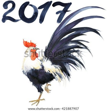 Rooster. Rooster Year. Chinese New Year of the Rooster. Watercolor ...