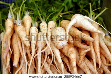 Root parsley on display in food market in Tel Aviv, Israel. Food background and texture - stock photo
