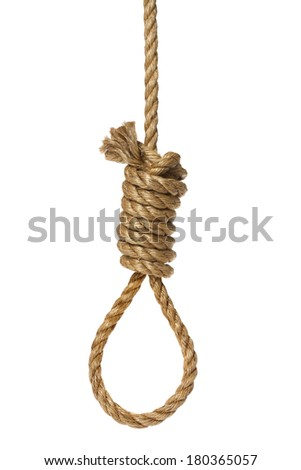 Rope knotted in noose on white background - stock photo