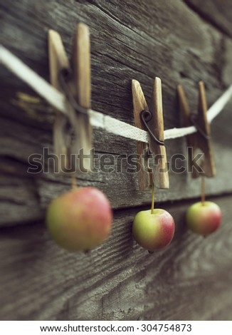 rope with clothespins and apples against old wood background, topic of  harvest time - stock photo