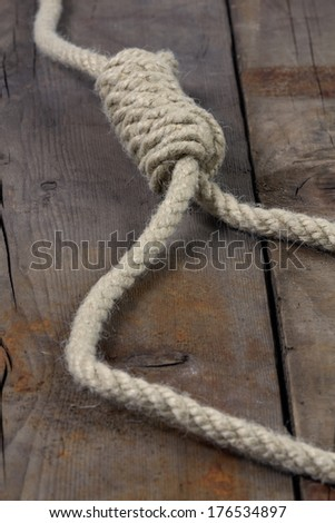Rope with hangman's noose on wooden background - stock photo