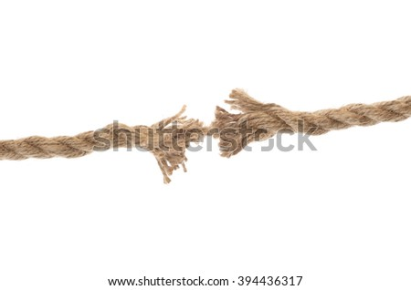 ropes with knot isolated on white background - stock photo