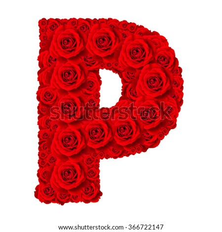 Rose alphabet set - Alphabet capital letter P made from red rose blossoms isolated on white background - stock photo