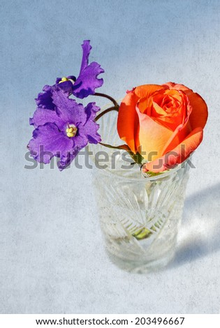 Rose and violet flowers in crystal glass on grange background - stock photo