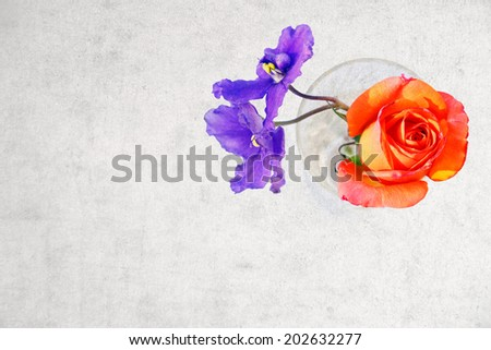 Rose and violet flowers in crystal glass with copy space on grange background - stock photo